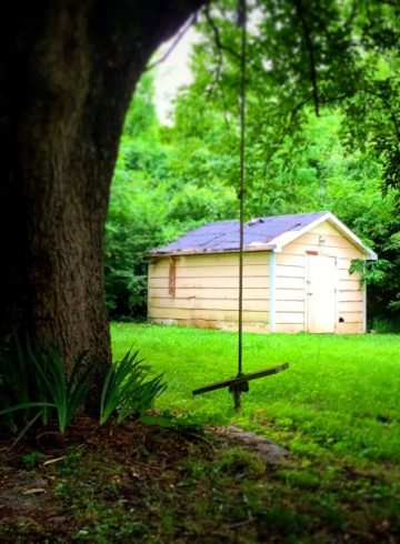 Shed Plans & Ideas