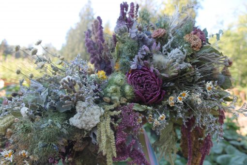 Dried Flower Bouquet, Pink Bridal Thistle Rustic Purple Cascading Seattle Wedding