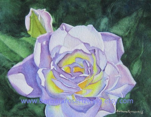 Original Rose Watercolor Painting, Flower Wall Art, White Purple Home Decor, Garden Lover