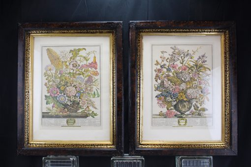 Two Antique Botanical Hand Colored Lithograph With Frames-Wall Décor Prints Flowers Leopard Spot Frames