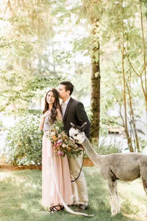 Dried Flower Bouquet, Pink Bridal Alpaca Wedding, Summer Wedding Flowers, Indie Bride, Elopement Bouquet