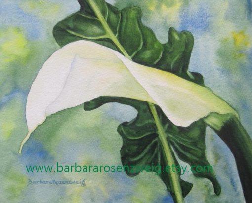 Original Calla Lily Watercolor Painting, White Flower Wall Art, Lover Garden Decor