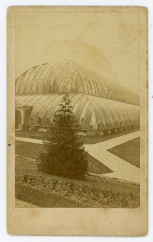 """Rare Identified Location, Circa Late 1800S Antique Cdv Photo - """"Great Conservatory, Great Stove, Chatsworth House, Derbyshire England"""""""