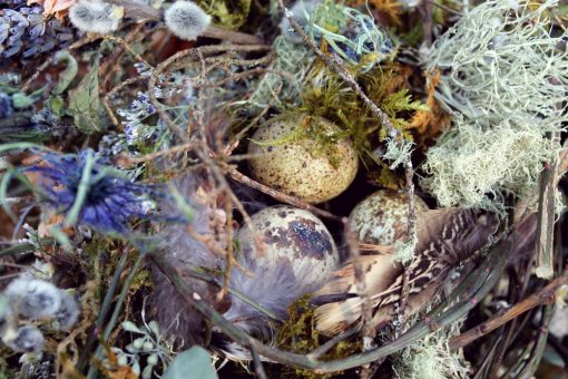 Dried Flower Bouquet, Bridal Quail Egg Bird Nest Blue Woodland Foraged Bouquet