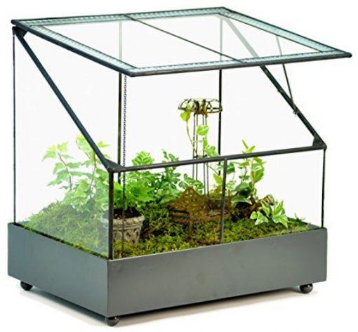 H Potter Terrarium Large Glass Wardian Case, Fairy Garden, Succulent Container, Orchid Planter, Plant House, Wedding Gift